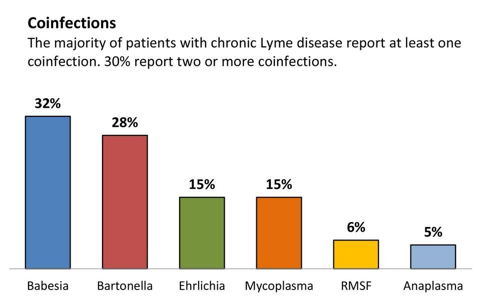 co-infections-lyme-disease
